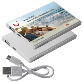 Powerbank Pineville